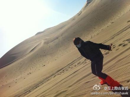 Zhang Yuan (Bird) 张远 62f7b109jw1dm4vk7mtcaj