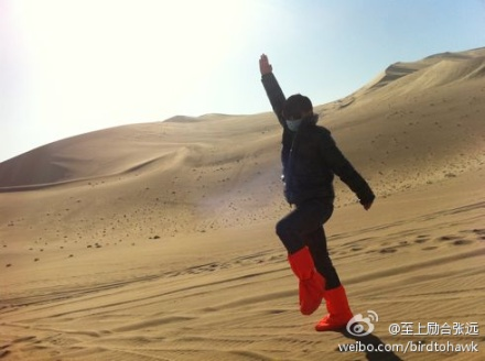 Zhang Yuan (Bird) 张远 62f7b109jw1dm4vkl38gdj